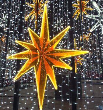 Julstjärna i vintermörker
