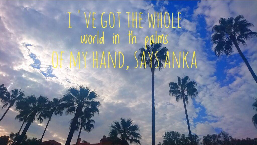 Himmel och palmer
