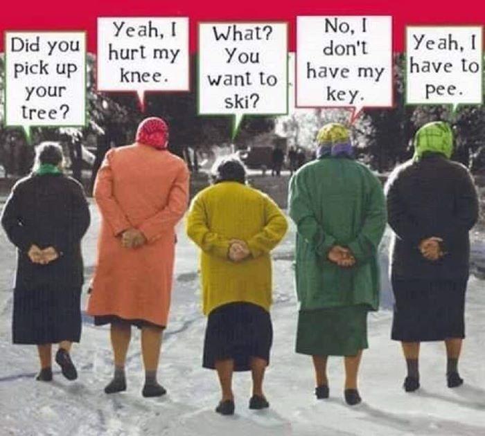 5 äldre damer